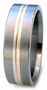 Ring 29 Titanium